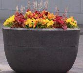 V moderno zasnovane domove se odlično podajo betonska korita za rože